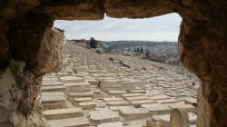 better mount of olives view-min