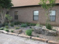 Outside Church: Flower Beds