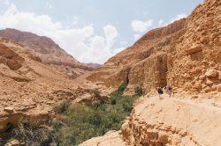 dry desert leading to ein gedi-min