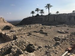 great view of megiddo tel-min